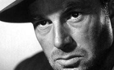 sterling hayden net worth